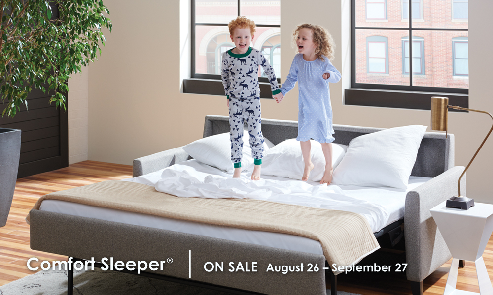 American Leather Comfort Sleeper Annual Late Summer Sale